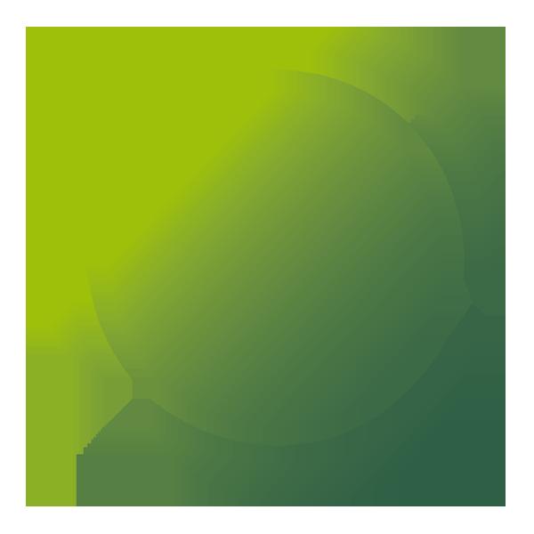 Logo Brodynt