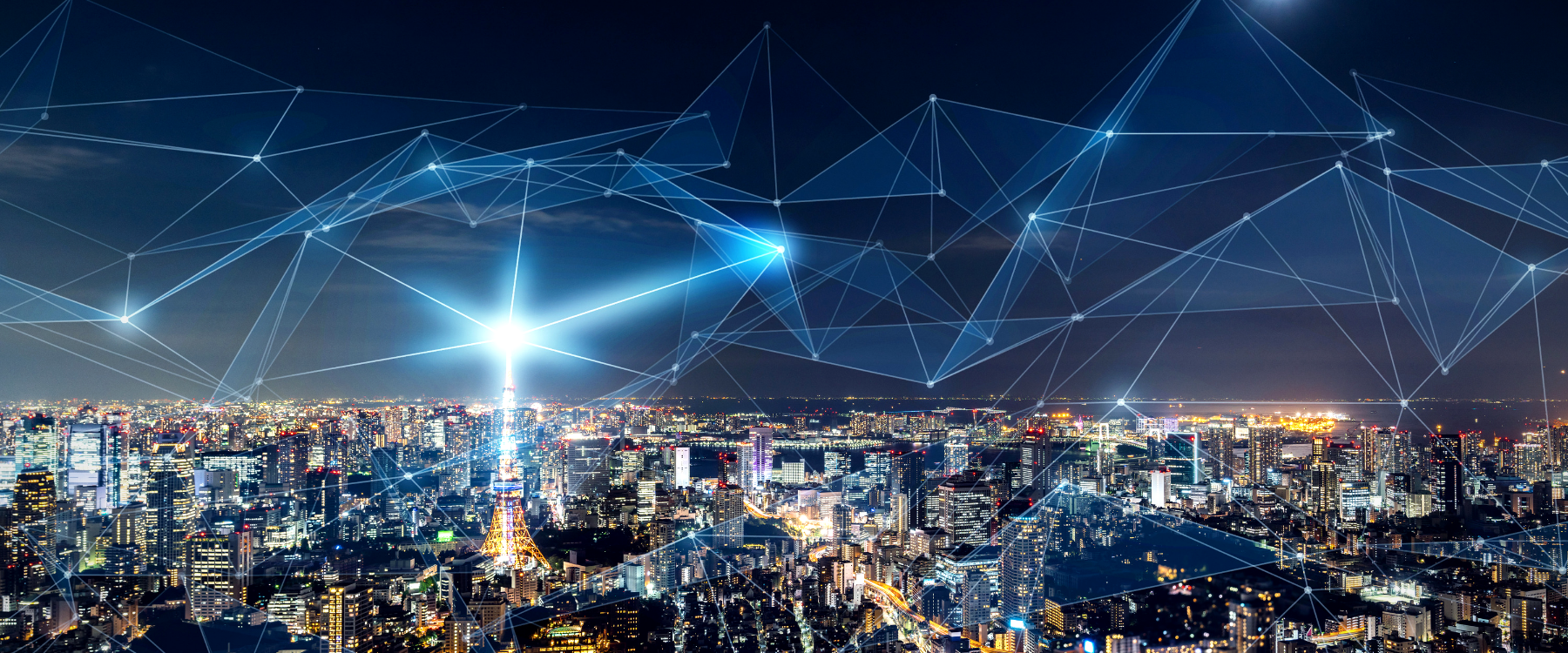 Cost-reducing carrier IP networks - Brodynt Global